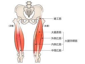 鵞足炎に対する鍼灸