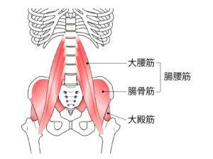 腸腰筋のコリによる腰痛